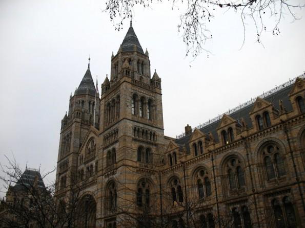 Het leuke Natural History Museum in een bijzonder fraai gebouw!