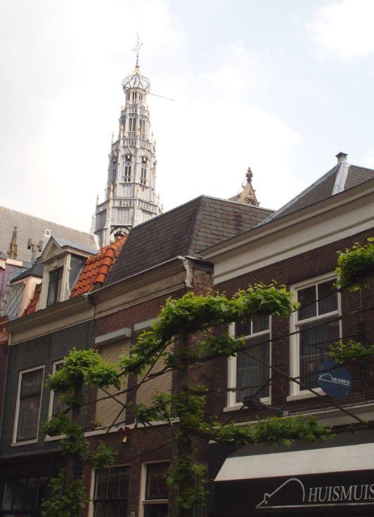 Prachtig uitzicht vanaf het terras van Jacobus Pieck!