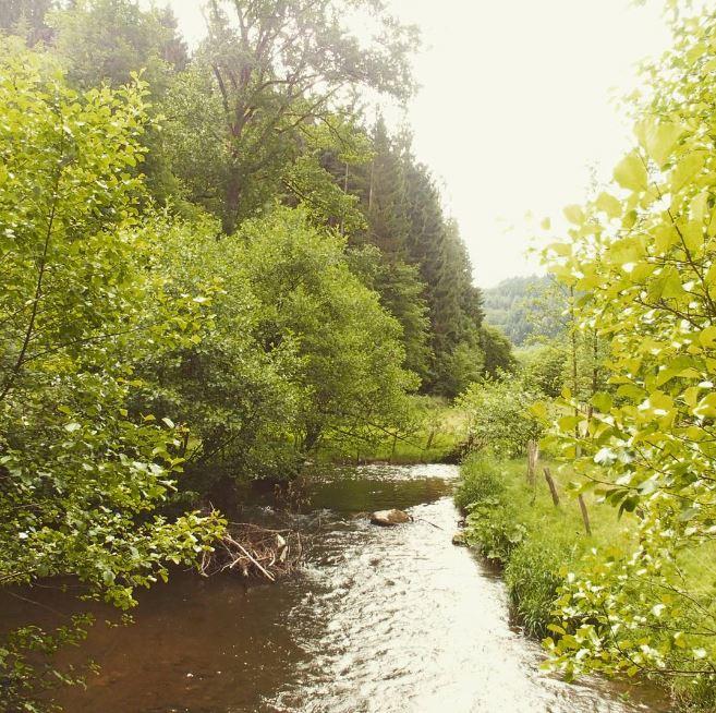 Ardennen_1
