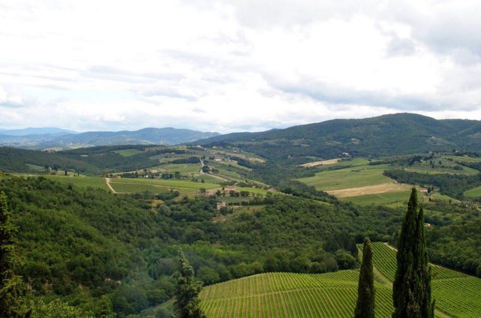 Castello di Verrazzano wijngaarden