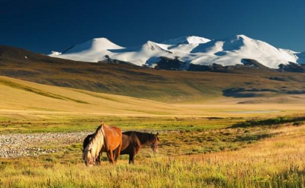 De verlatenheid en serene sfeer in Mongolië: wat wil ik hier graag eens heen!