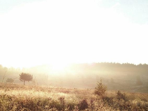 Leesten zonsopgang (15)