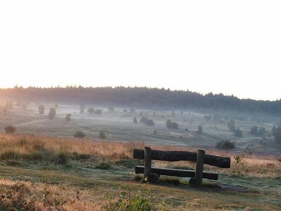 Leesten zonsopgang (4)
