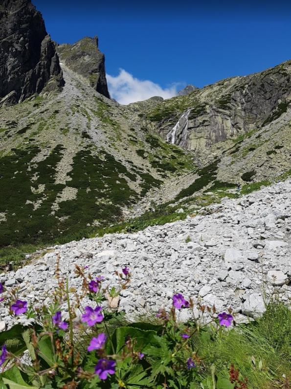 Hoge Tatra Slowakije zomer