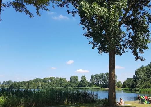 Triathlon Haarlemmermeerse Bos