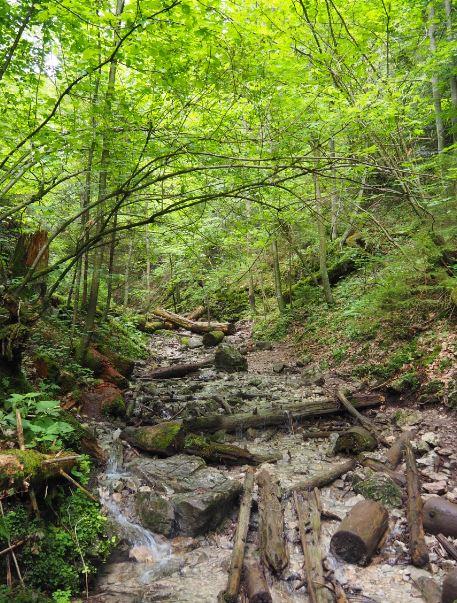 Slowaaks Paradijs Monastry Gorge