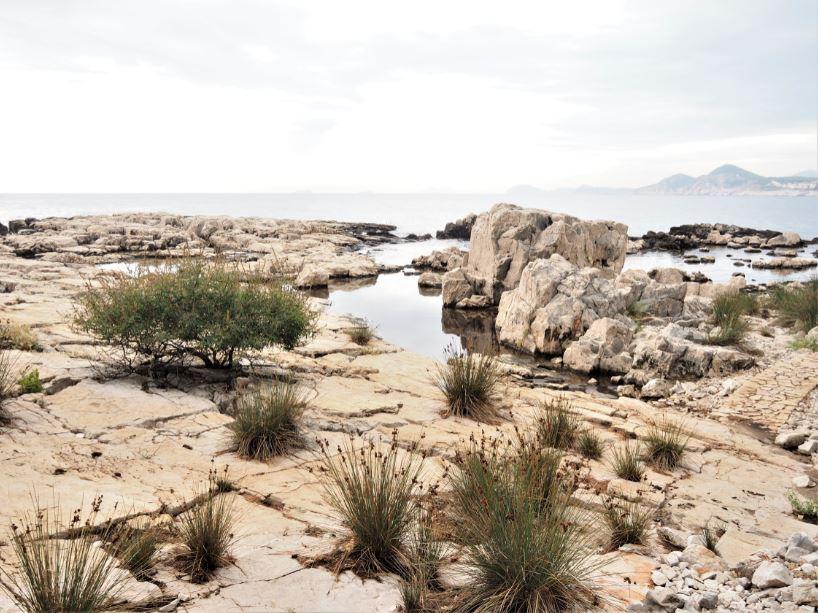 Lokrum Island rotsen