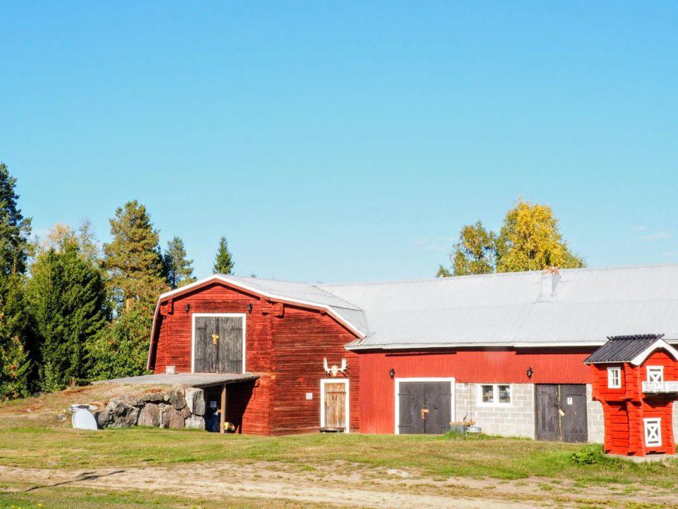 Svedjekojan Husky Farm
