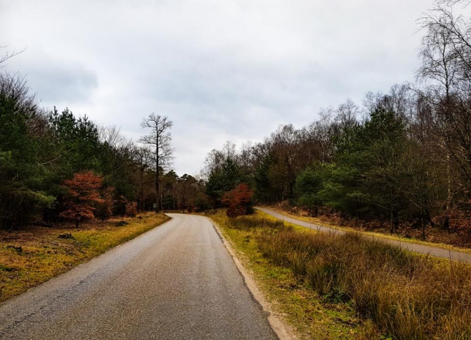 Apeldoorn Pomphulweg
