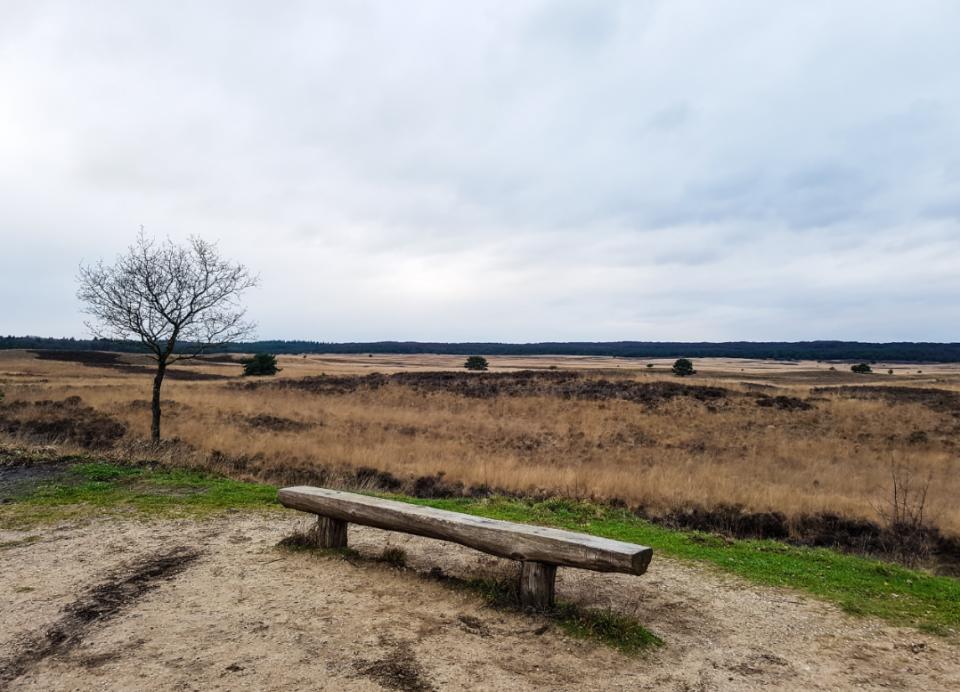 Natuur Apeldoorn Asselsche Heide